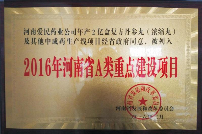 2016年河南省A类重点建设项目